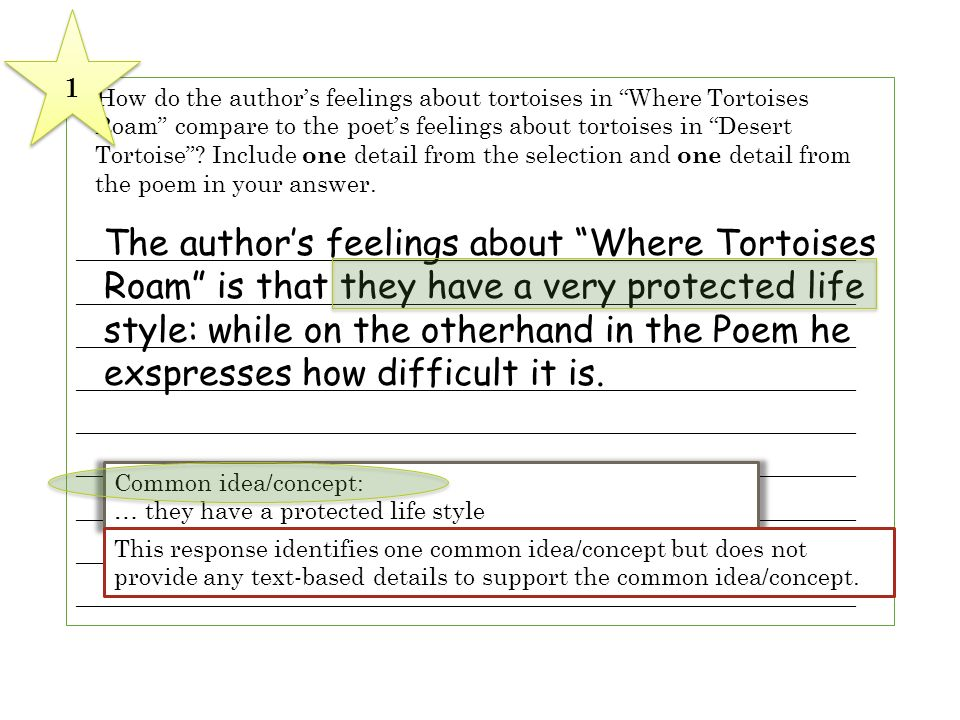 6 How do the authors feelings about tortoises in Where Tortoises Roam compare to the poets feelings about tortoises in Desert Tortoise? Include one de
