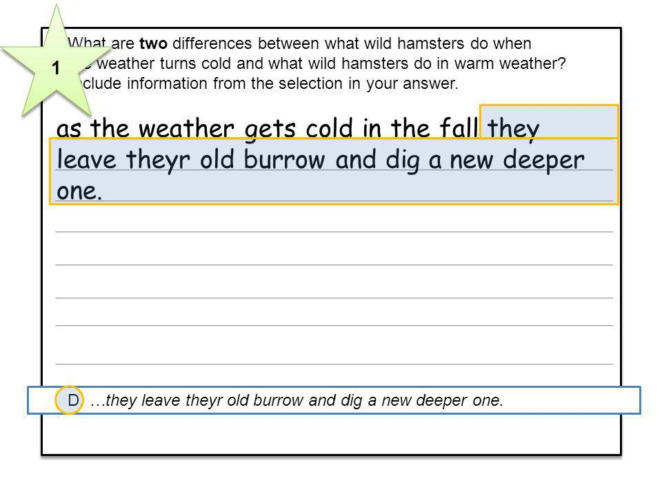 7 What are two differences between what wild hamsters do when the weather turns cold and what wild hamsters do in warm weather? Include information fr