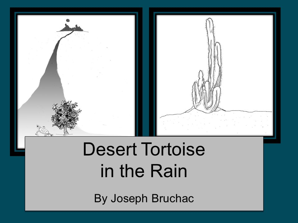 This response includes one detail from the poem to explain why the tortoise begins his trek back toward the Mohave.