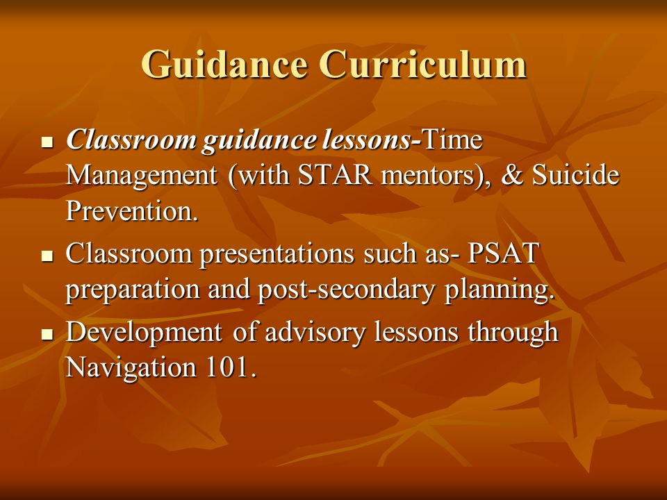 Guidance Curriculum Classroom guidance lessons-Time Management (with STAR mentors), & Suicide Prevention.