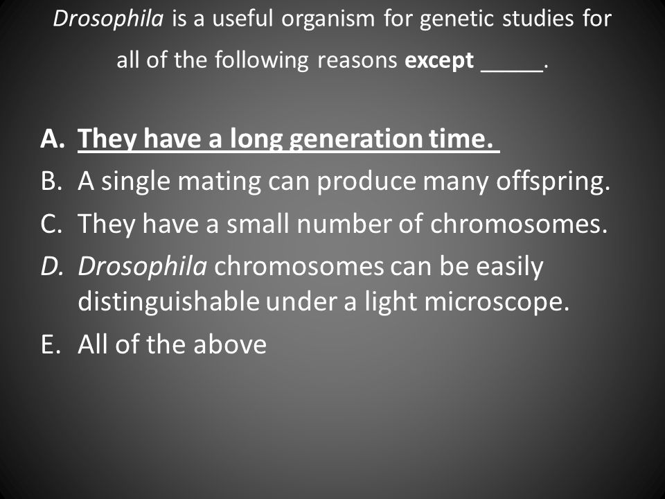 Drosophila is a useful organism for genetic studies for all of the following reasons except _____. A.They have a long generation time. B.A single mati