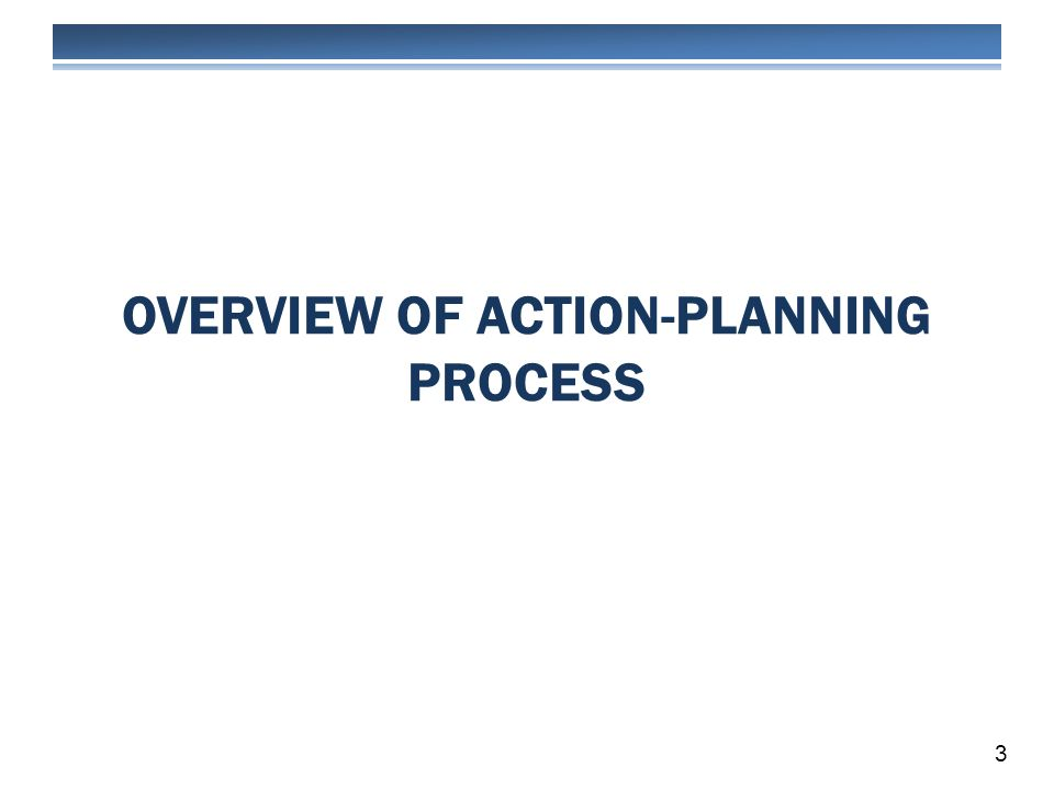 OVERVIEW OF ACTION-PLANNING PROCESS 3