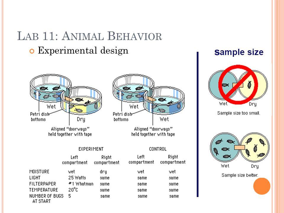 L AB 11: A NIMAL B EHAVIOR Experimental design s ample size