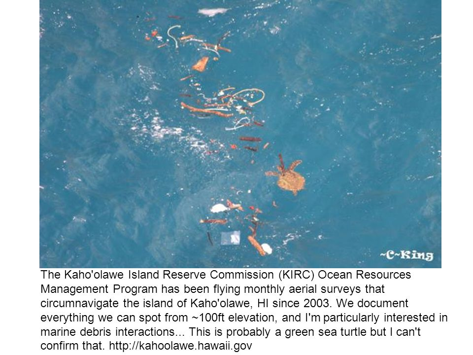 The Kaho olawe Island Reserve Commission (KIRC) Ocean Resources Management Program has been flying monthly aerial surveys that circumnavigate the island of Kaho olawe, HI since 2003.