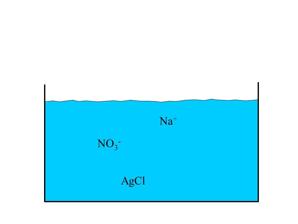 AgCl NO 3 - Na +