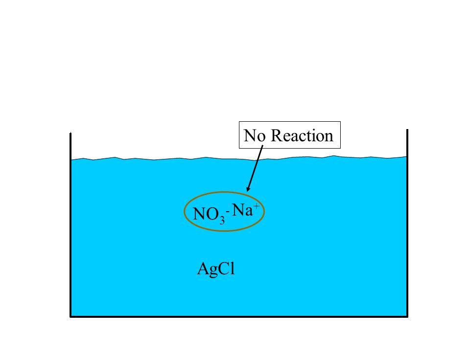 AgCl NO 3 - Na + No Reaction