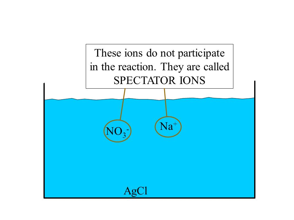 AgCl NO 3 - Na + These ions do not participate in the reaction. They are called SPECTATOR IONS