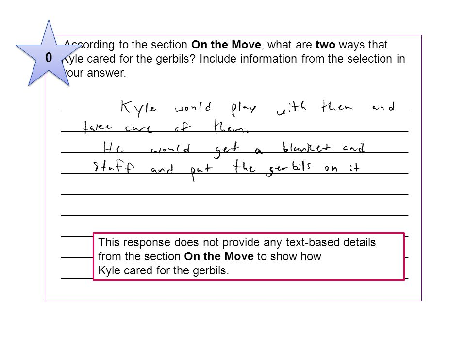 3 According to the section On the Move, what are two ways that Kyle cared for the gerbils? Include information from the selection in your answer. ____