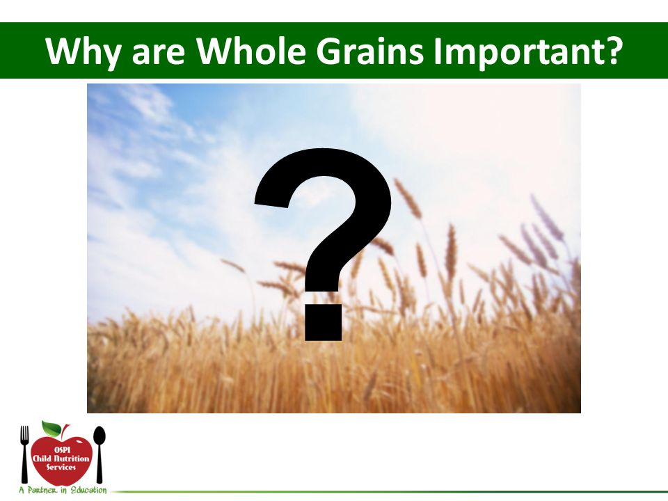 Why are Whole Grains Important
