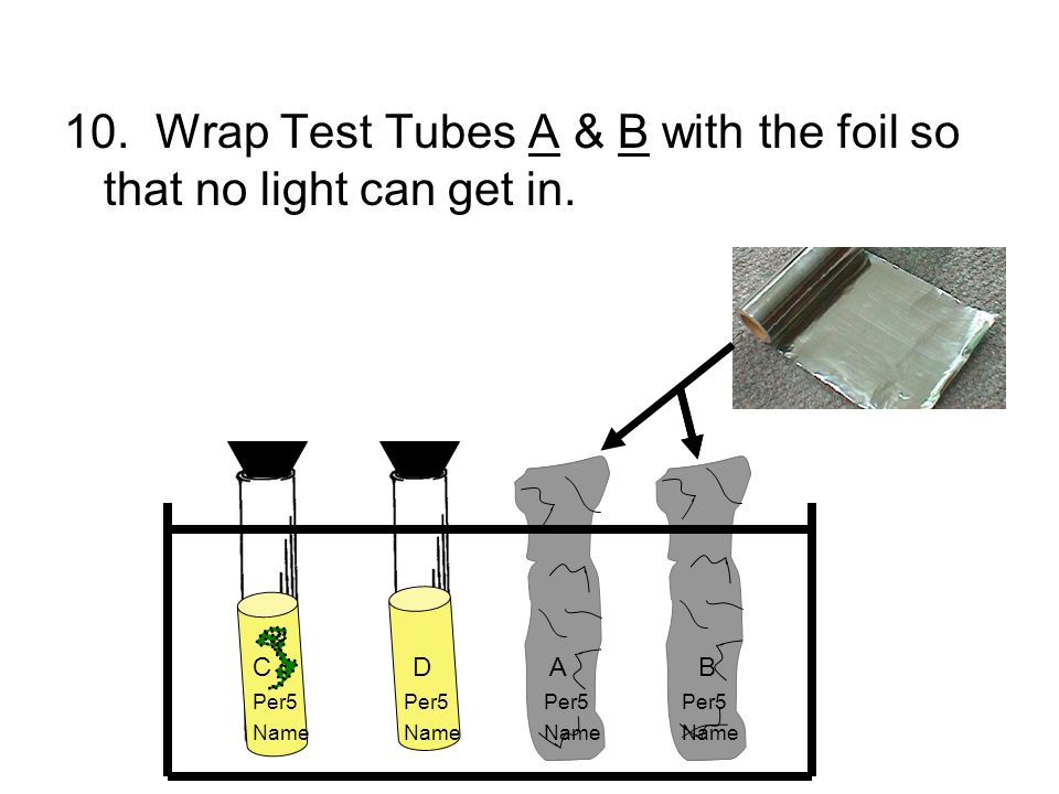 10. Wrap Test Tubes A & B with the foil so that no light can get in. C D A B Per5 Per5 Name NameName Name
