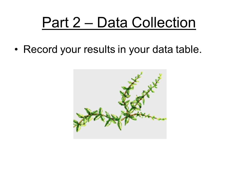 Part 2 – Data Collection Record your results in your data table.
