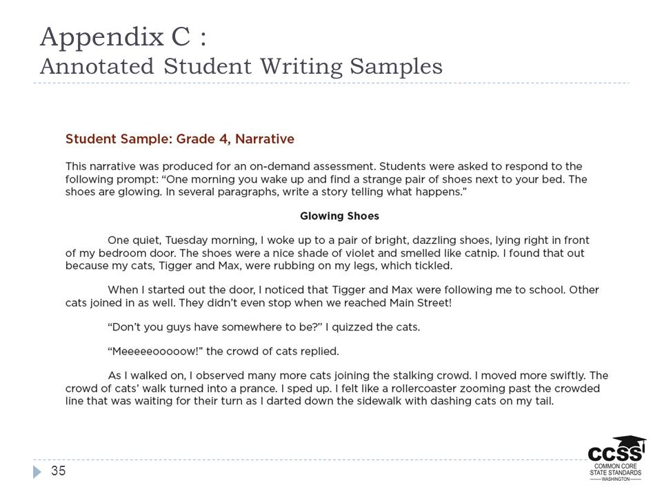 Appendix C : Annotated Student Writing Samples 35