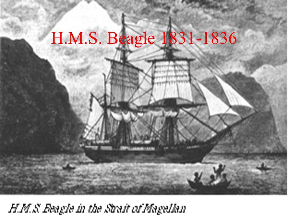 H.M.S. Beagle 1831-1836