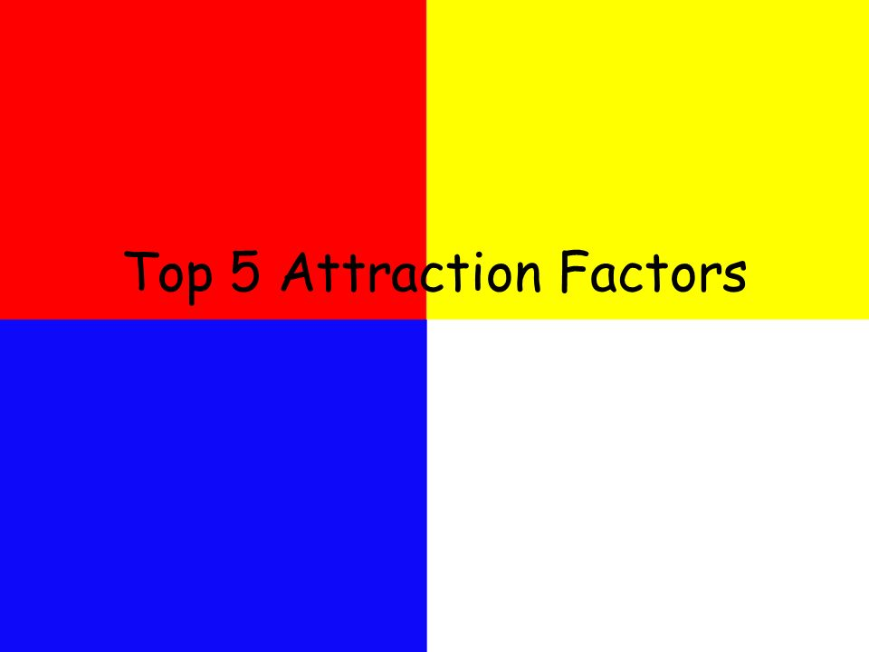 Top 5 Attraction Factors