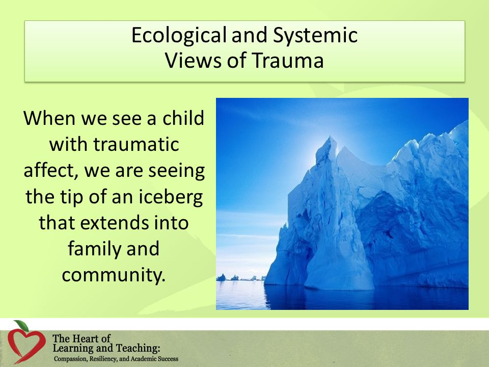 Ecological and Systemic Views of Trauma When we see a child with traumatic affect, we are seeing the tip of an iceberg that extends into family and community.
