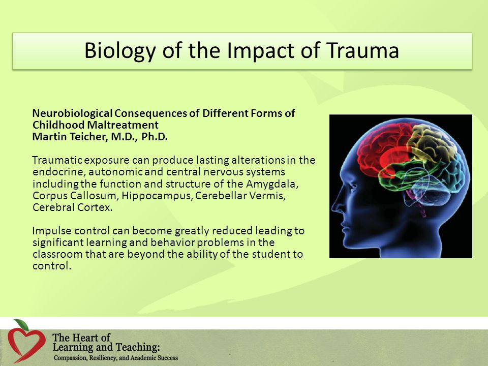 Biology of the Impact of Trauma Neurobiological Consequences of Different Forms of Childhood Maltreatment Martin Teicher, M.D., Ph.D.