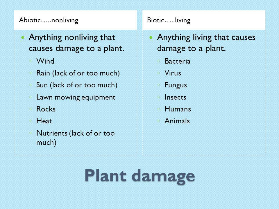 Plant damage Abiotic…..nonlivingBiotic…..living Anything nonliving that causes damage to a plant.
