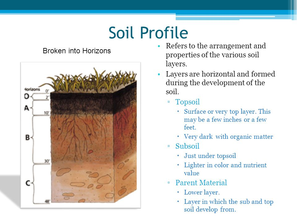 Soil Profile Refers to the arrangement and properties of the various soil layers. Layers are horizontal and formed during the development of the soil.