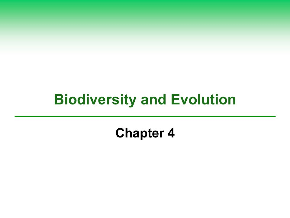 Biodiversity and Evolution Chapter 4