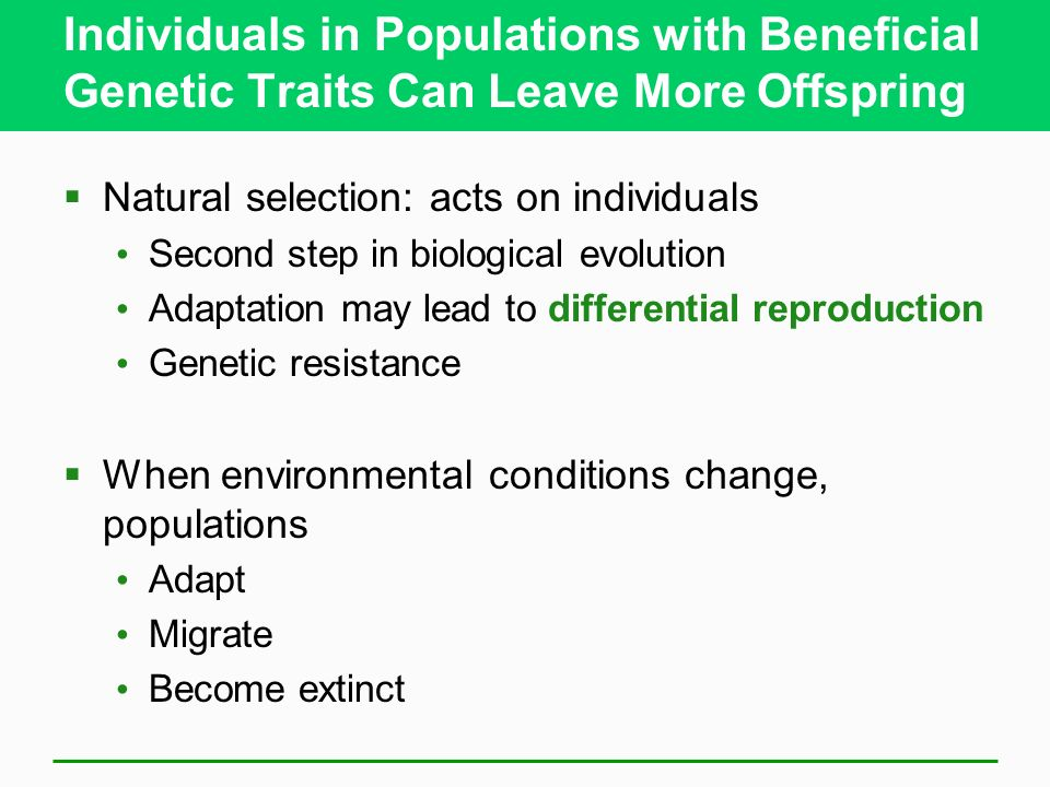 Individuals in Populations with Beneficial Genetic Traits Can Leave More Offspring Natural selection: acts on individuals Second step in biological ev