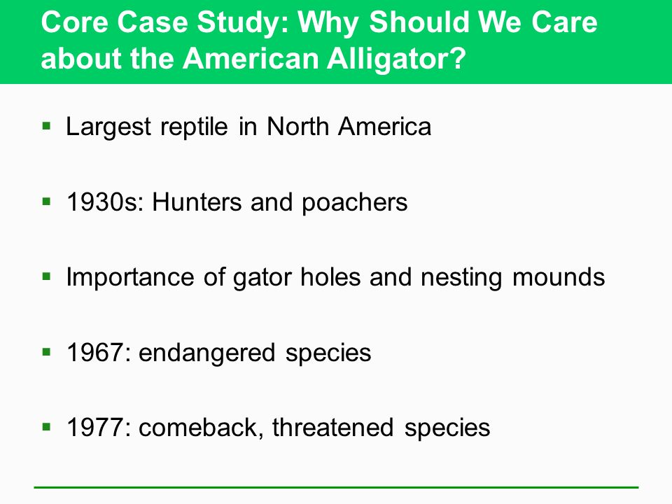 Core Case Study: Why Should We Care about the American Alligator? Largest reptile in North America 1930s: Hunters and poachers Importance of gator hol