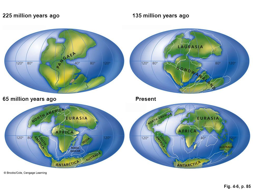 Fig. 4-6, p. 85 225 million years ago135 million years ago 65 million years agoPresent