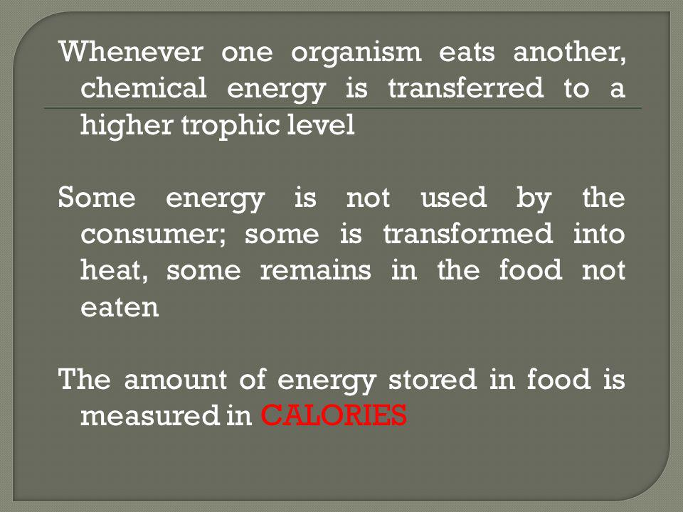 Whenever one organism eats another, chemical energy is transferred to a higher trophic level Some energy is not used by the consumer; some is transfor