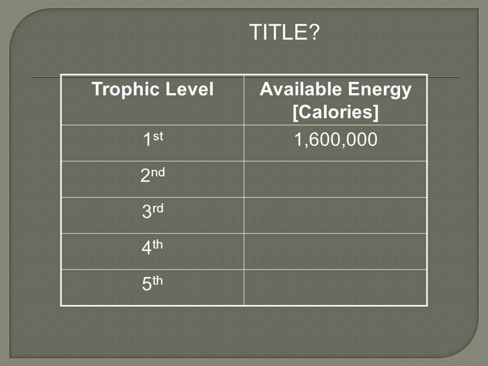 Trophic LevelAvailable Energy [Calories] 1 st 1,600,000 2 nd 3 rd 4 th 5 th TITLE?