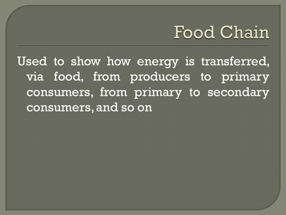 Used to show how energy is transferred, via food, from producers to primary consumers, from primary to secondary consumers, and so on