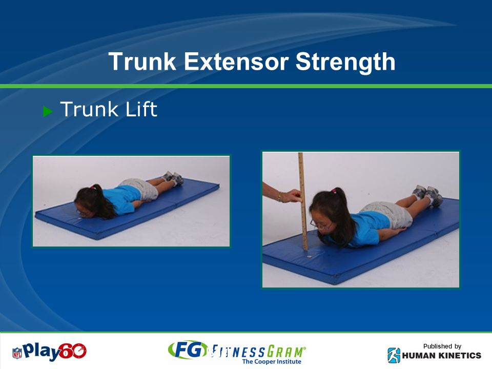 Published by Trunk Extensor Strength Trunk Lift