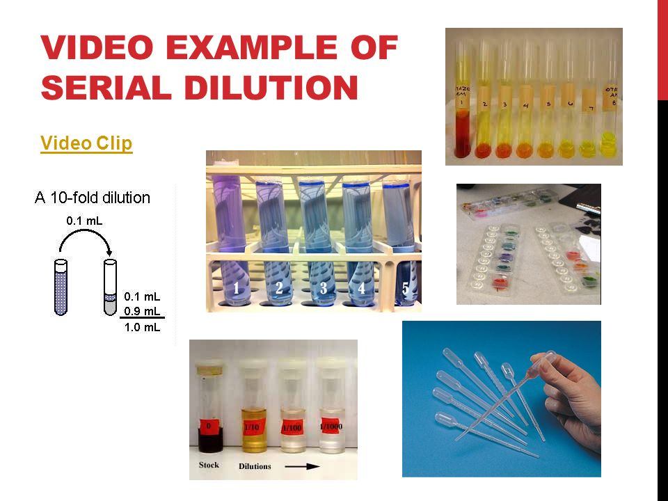 SERIAL DILUTIONS CONT.Lets try a serial dilution… 1.Place a paper towel under your SEPUP tray.