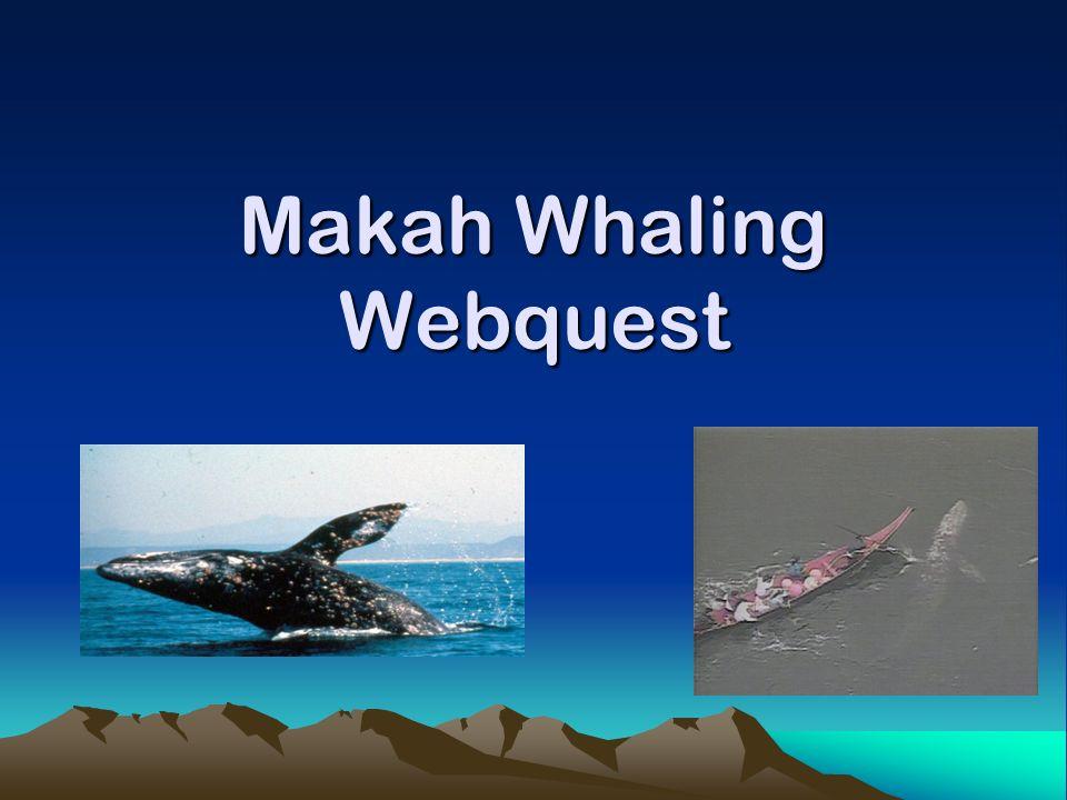 Makah Whaling Webquest