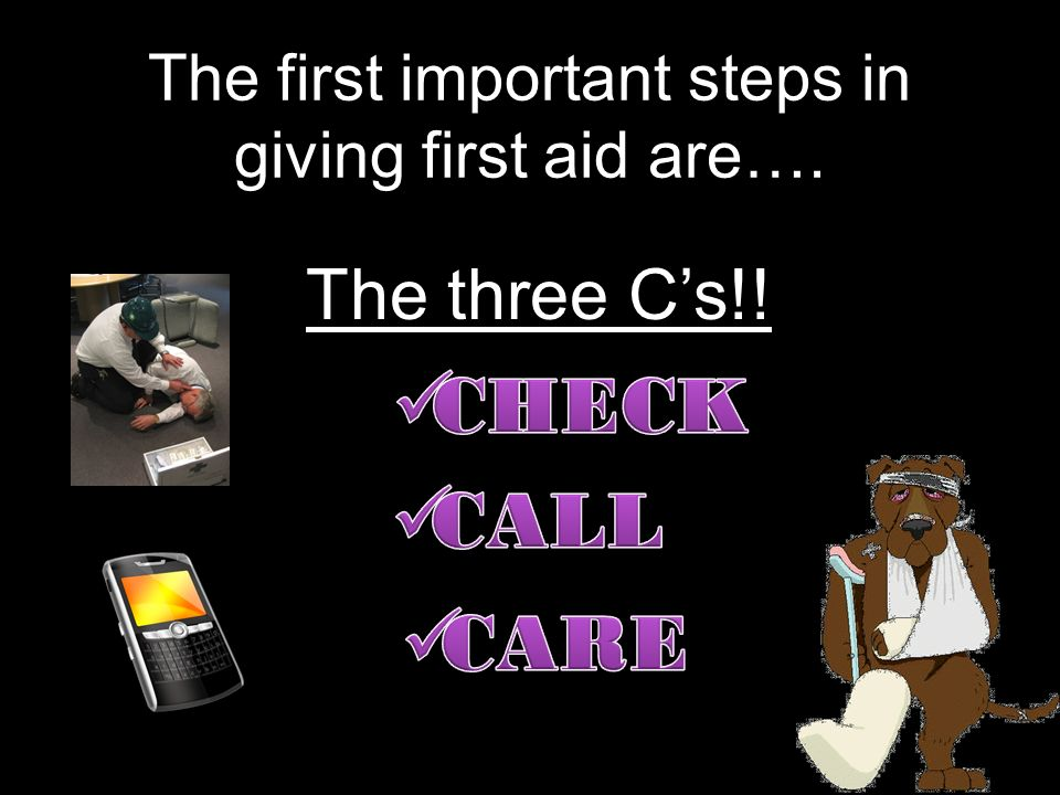 Once you have followed the first two Cs, you may need to give care until EMS personnel arrive. Follow these guidelines: Do no further harm. Monitor th