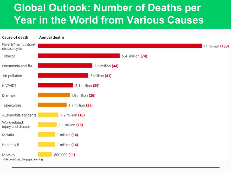 Global Outlook: Number of Deaths per Year in the World from Various Causes