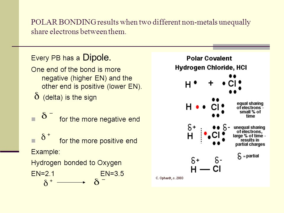 POLAR BONDING results when two different non-metals unequally share electrons between them. Every PB has a Dipole. One end of the bond is more negativ