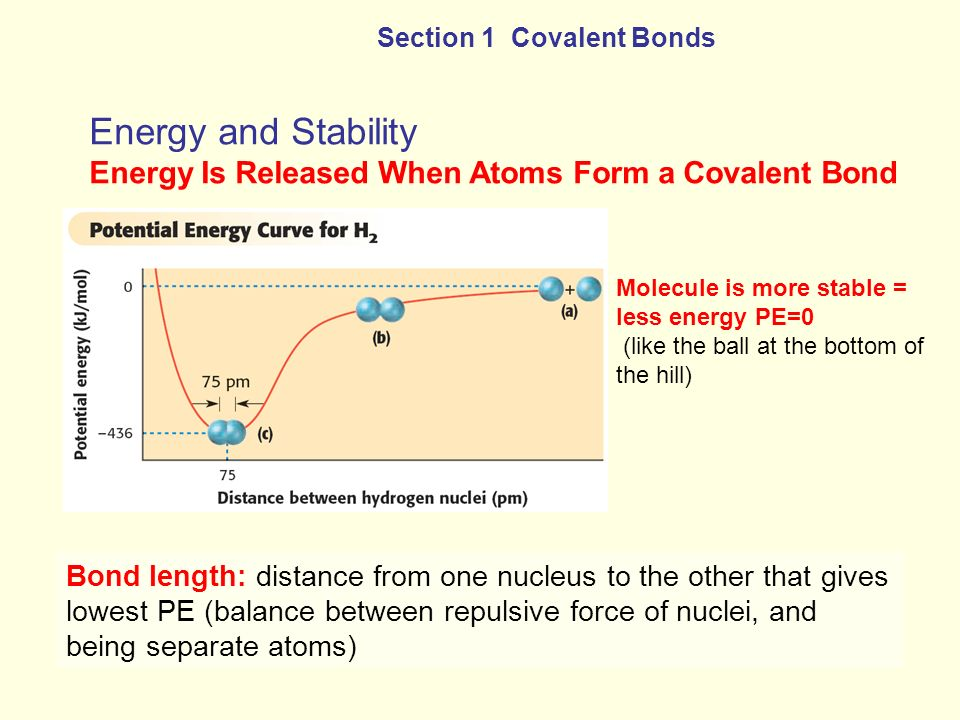 Energy and Stability Energy Is Released When Atoms Form a Covalent Bond Section 1 Covalent Bonds Bond length: distance from one nucleus to the other t