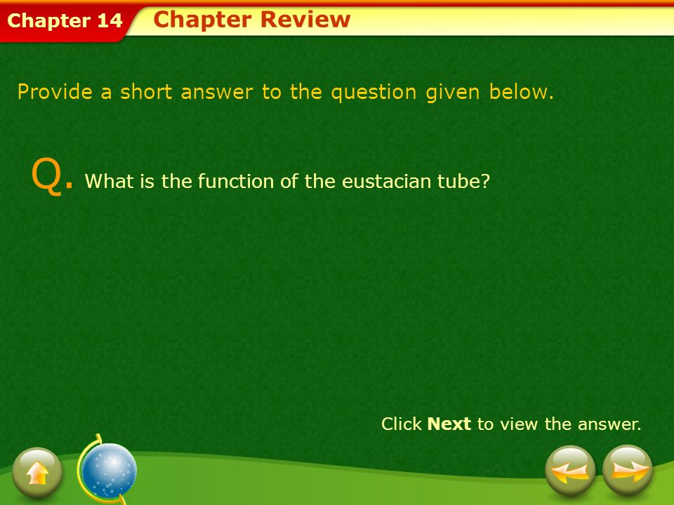Chapter 14 Q. What is the function of the eustacian tube? Provide a short answer to the question given below. Click Next to view the answer. Chapter R