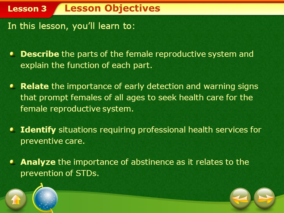 Lesson 3 Menstrual Cramps Premenstrual Syndrome Problems Related to Menstruation Toxic Shock Syndrome Problems of the Female Reproductive System