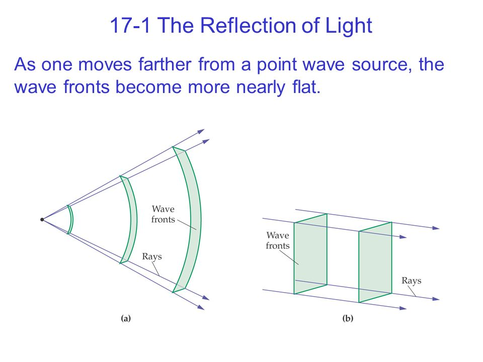 17-1 The Reflection of Light As one moves farther from a point wave source, the wave fronts become more nearly flat.