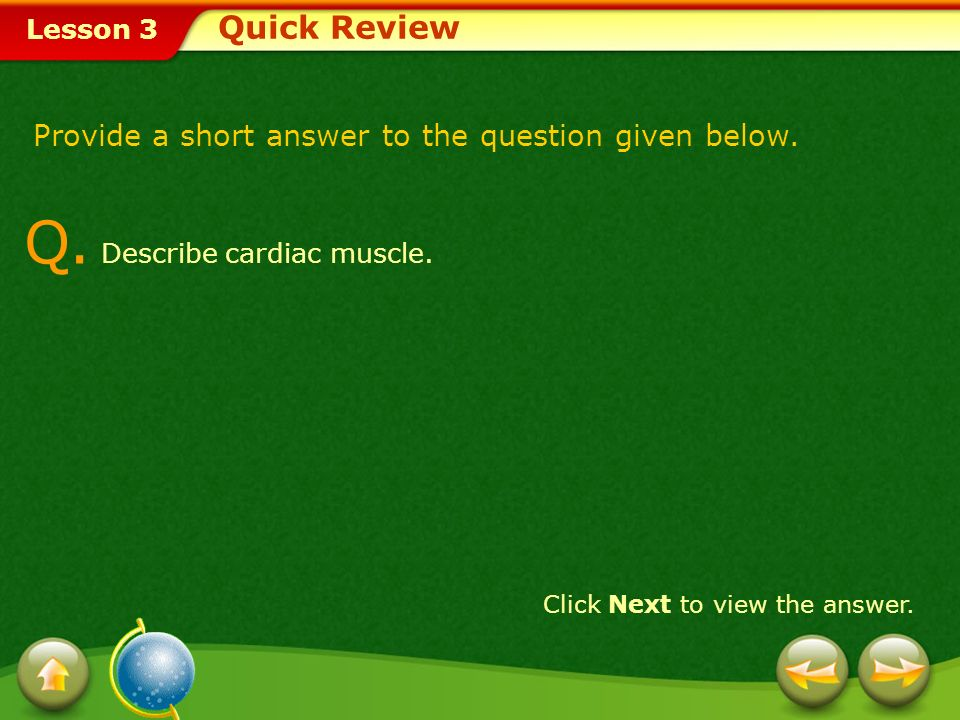 Lesson 3 A. Muscles work with respiratory, cardiovascular, and digestive systems. Click Next to attempt another question. Quick Review - Answer