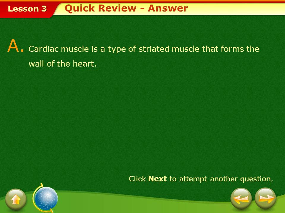 Lesson 3 Provide a short answer to the question given below. Click Next to view the answer. Q. Describe cardiac muscle. Quick Review