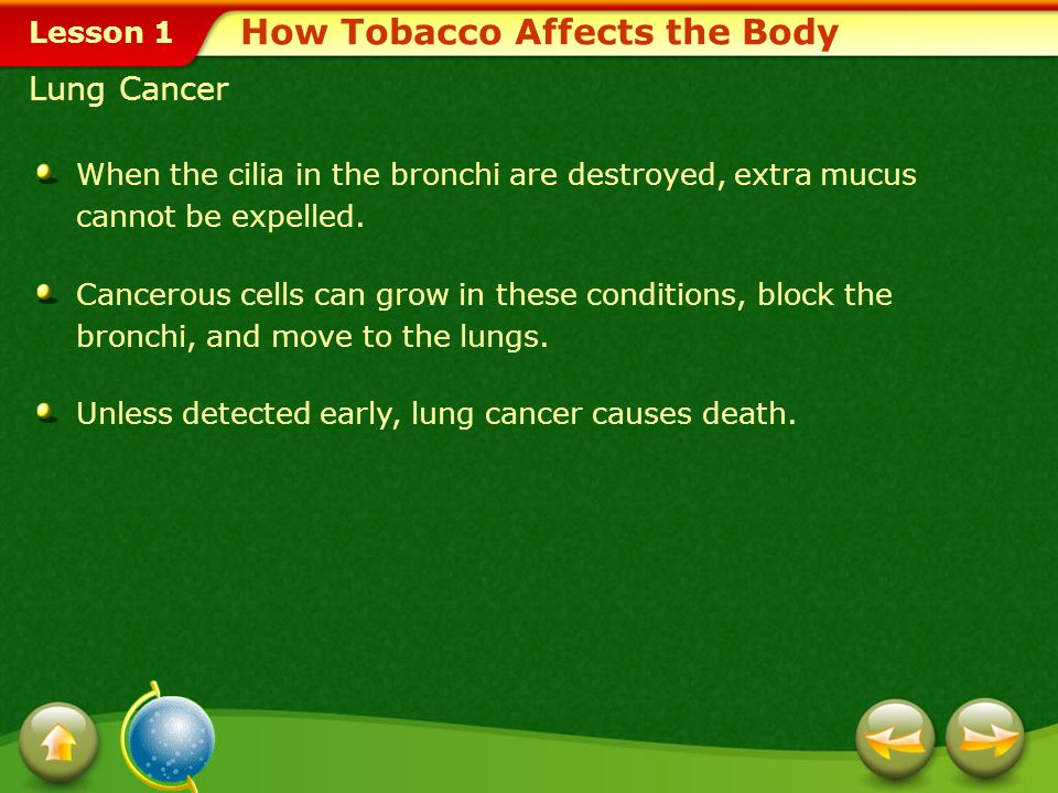 Lesson 1 How Tobacco Affects the Body Emphysema This is a disease that destroys the tiny air sacs in the lungs. The air sacs become less elastic, maki
