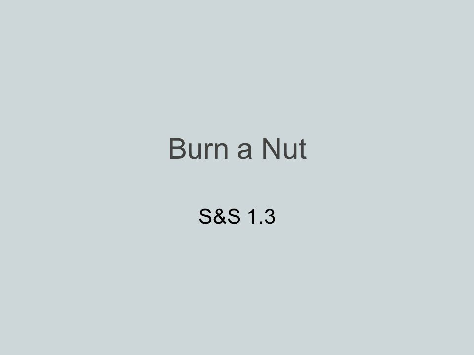 Burn a Nut S&S 1.3