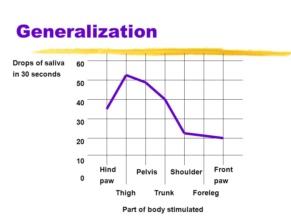 Generalization Drops of saliva in 30 seconds 60 50 40 30 20 10 0 Hind paw PelvisShoulder Front paw ThighTrunkForeleg Part of body stimulated