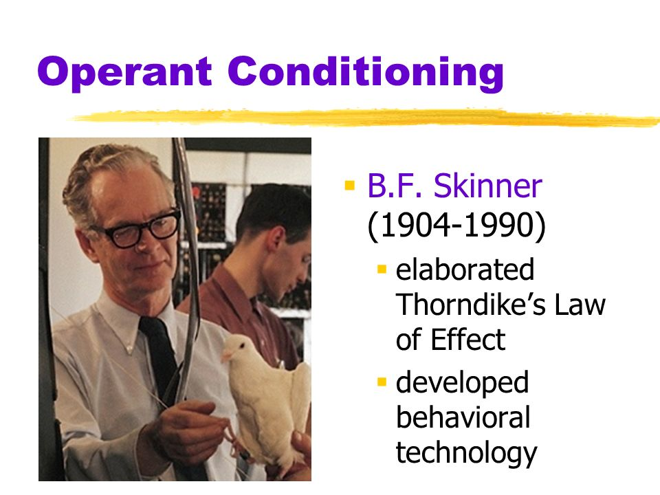 Operant Conditioning B.F. Skinner (1904-1990) elaborated Thorndikes Law of Effect developed behavioral technology
