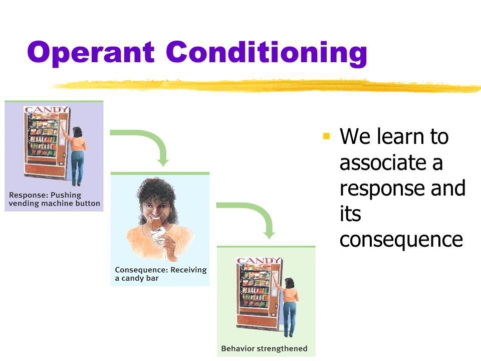 Operant Conditioning Operant Behavior operates (acts) on environment produces consequences Respondent Behavior occurs as an automatic response to stimulus behavior learned through classical conditioning