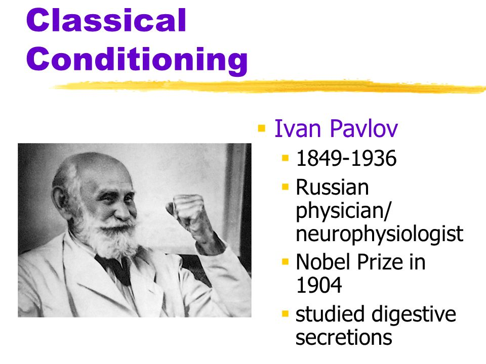 Classical Conditioning Ivan Pavlov 1849-1936 Russian physician/ neurophysiologist Nobel Prize in 1904 studied digestive secretions