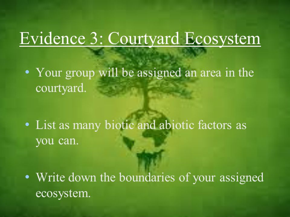 Evidence 3: Courtyard Ecosystem Your group will be assigned an area in the courtyard. List as many biotic and abiotic factors as you can. Write down t