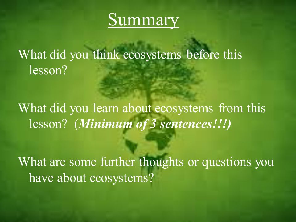 Summary What did you think ecosystems before this lesson? What did you learn about ecosystems from this lesson? (Minimum of 3 sentences!!!) What are s