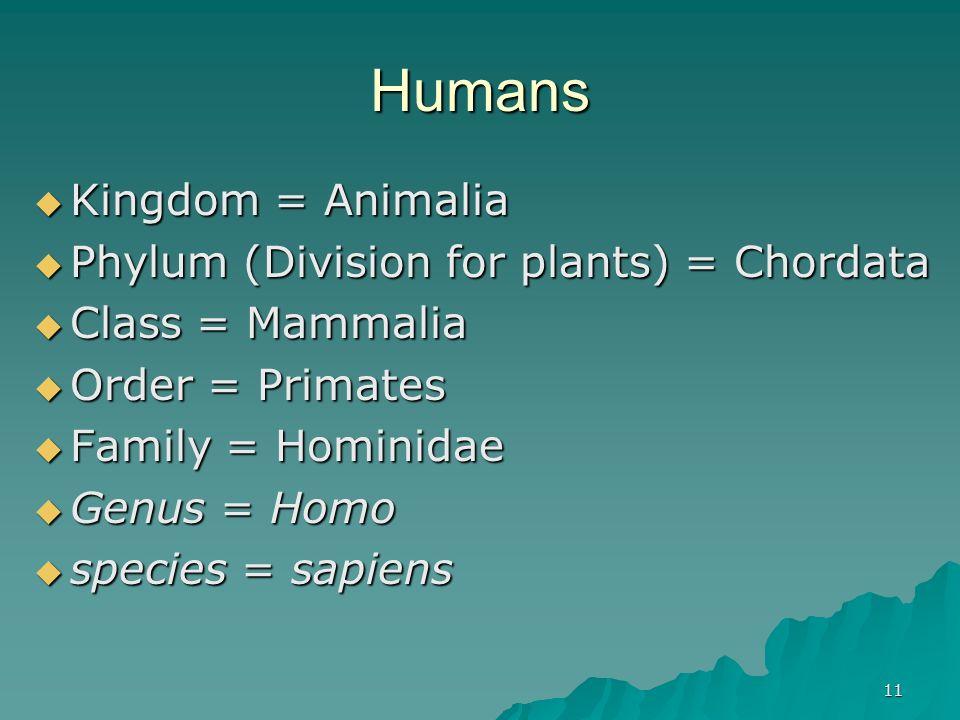 11 Humans Kingdom = Animalia Kingdom = Animalia Phylum (Division for plants) = Chordata Phylum (Division for plants) = Chordata Class = Mammalia Class